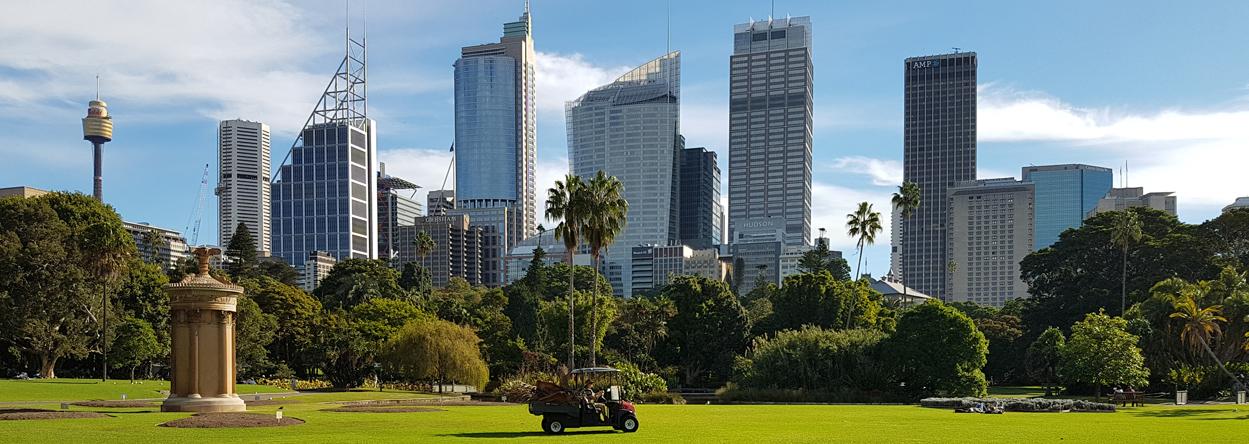 Bild vom botanischen Garten in Sydney
