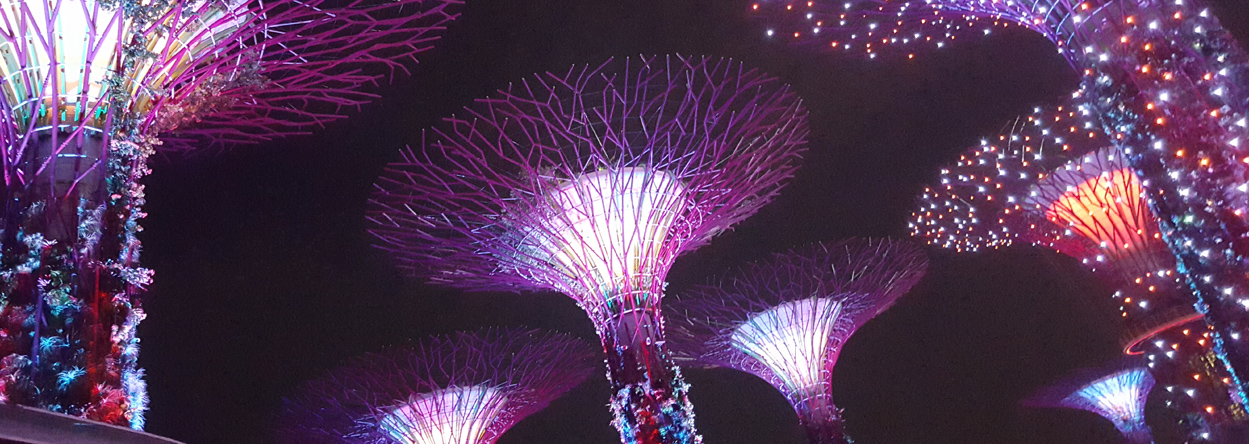 Bild von der Lichtershow in den Gardens by the Bay