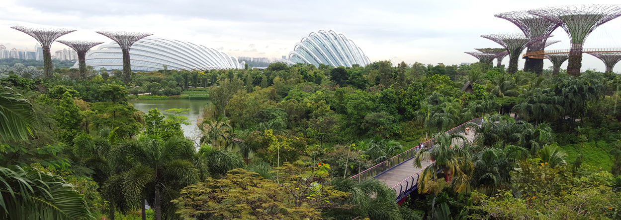 Bild von den Gardens by the bay