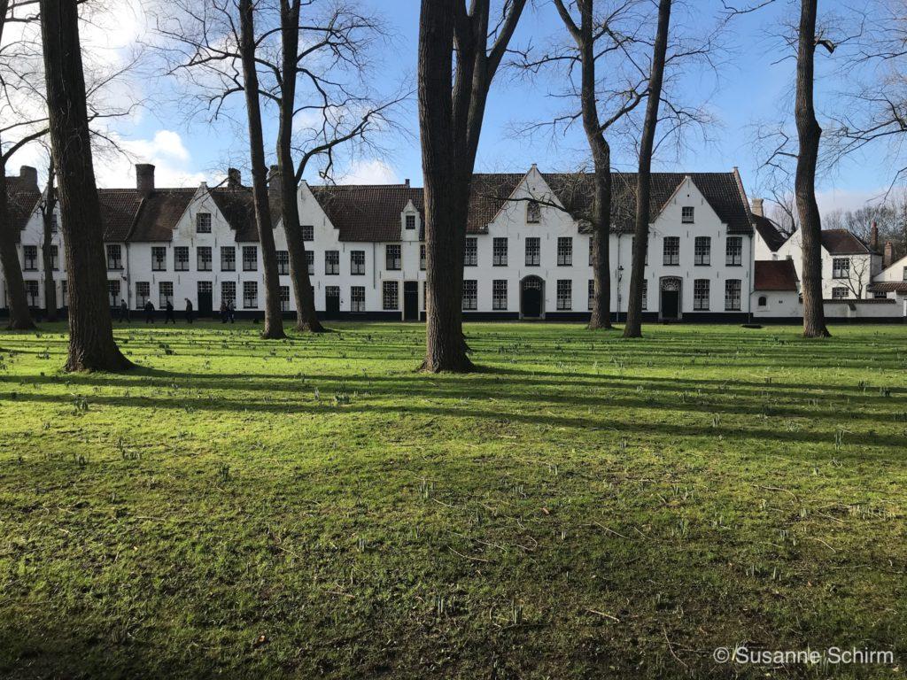 Bild vom Beginenhof in Brügge