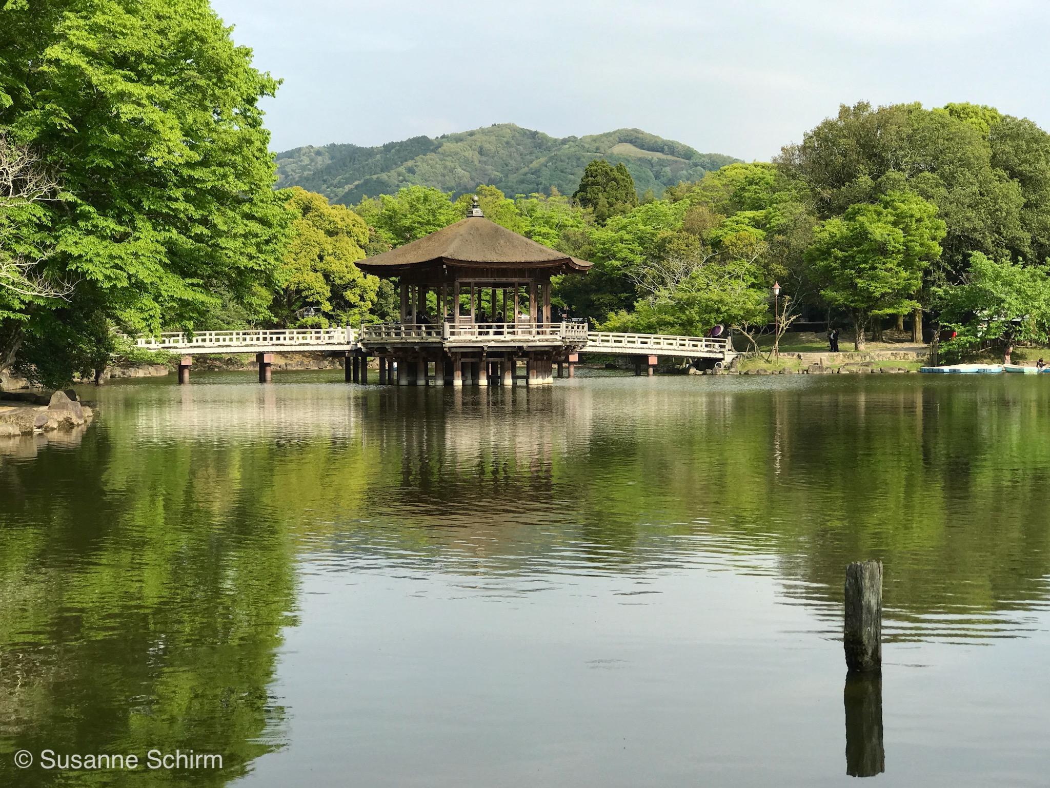 Bild vom Sagi-ike See