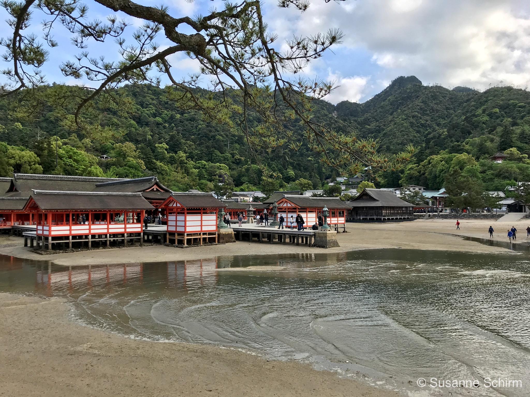 Bild vom Itsukushima-Schrein