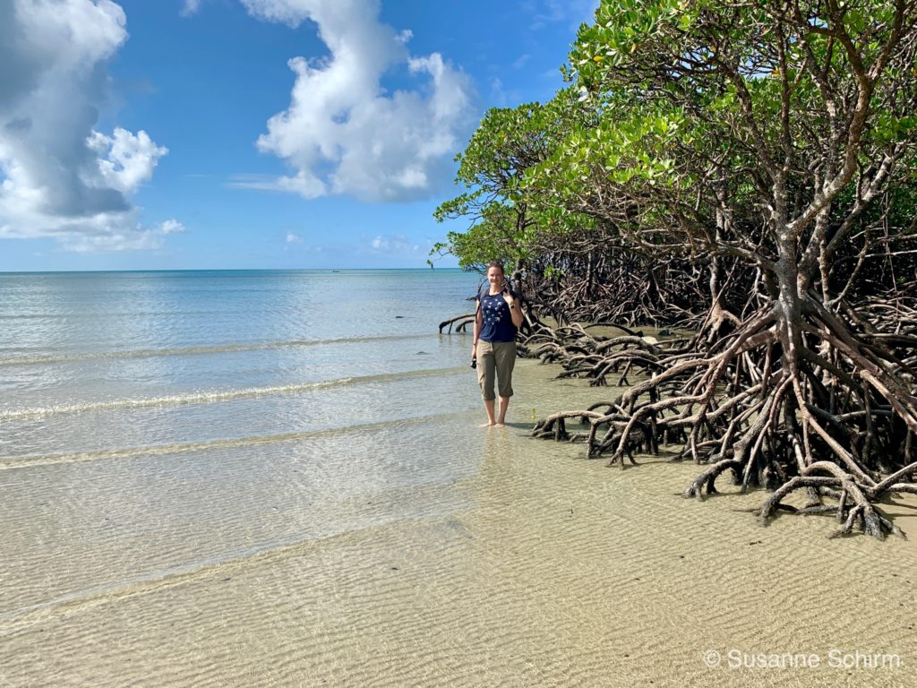 Cape Tribulation im Daintree-Nationalpark