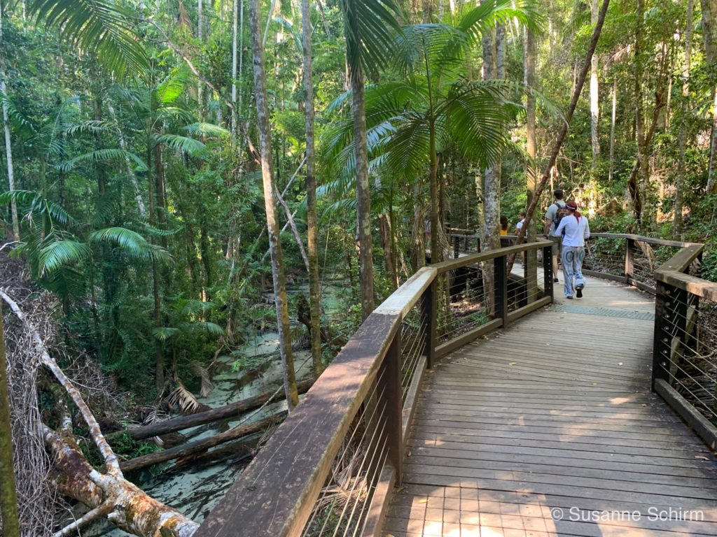 Wanggoolba Creek Walk